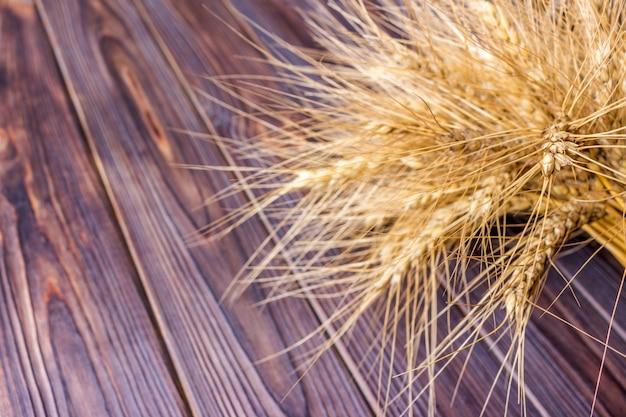 Troncos de trigo, sobre fondo de madera concepto de cosecha