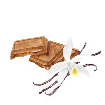 Trozos de chocolate acuarela con flor de vainilla