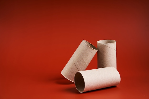 Un tubo de papel higiénico de cartón vacío de cerca.