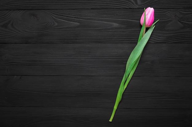 Tulipán aislado sobre fondo de madera