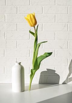 Tulipán amarillo levitando sobre una pared de ladrillo blanco y una sombra detrás de él.