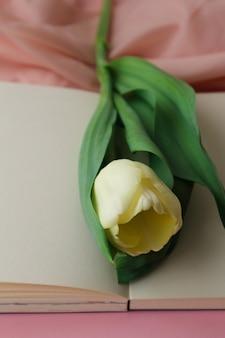 Tulipán blanco sobre un delicado fondo rosa