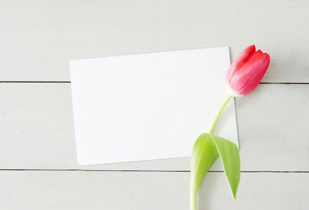 Tulipán con tarjeta de felicitación blanca en blanco