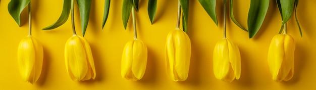 Tulipanes amarillos de primavera sobre fondo de papel, endecha plana