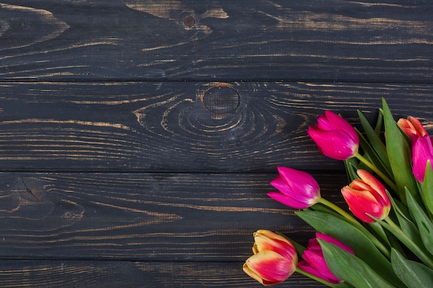 Tulipanes brillantes en esquina