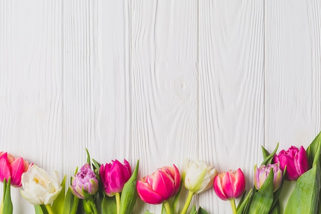 Tulipanes brillantes sobre fondo de madera