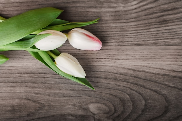 Tulipanes brillantes sobre tabla de madera