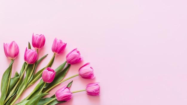 Tulipanes decorativos de colores sobre un fondo