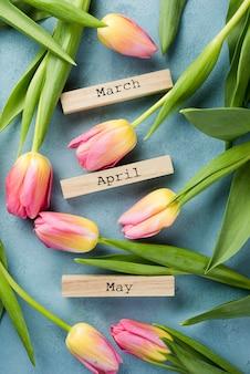 Tulipanes florecientes con etiquetas de meses de primavera