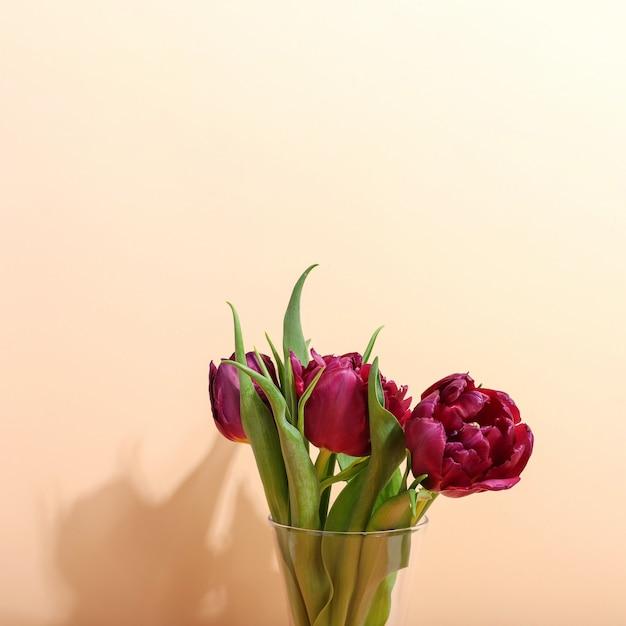 Tulipanes en un florero en brillante, la sombra de la mañana de la luz del sol. arte conceptual para la tarjeta de felicitación.
