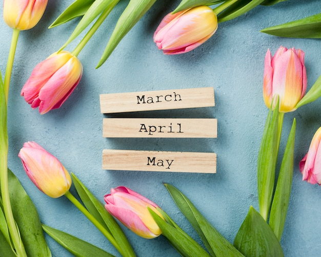 Tulipanes con meses de primavera en la mesa