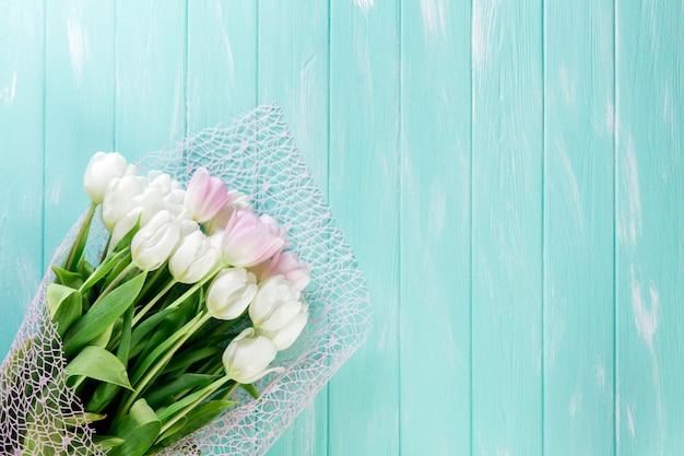 Tulipanes muy tiernos rosados y blancos sobre fondo de madera azul verde