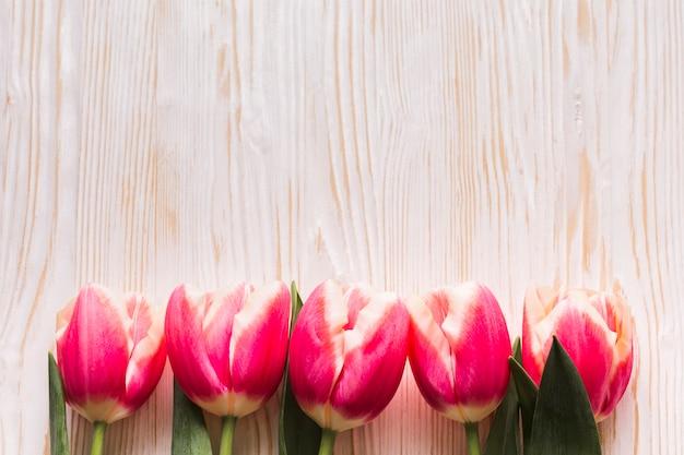 Tulipanes planos en mesa