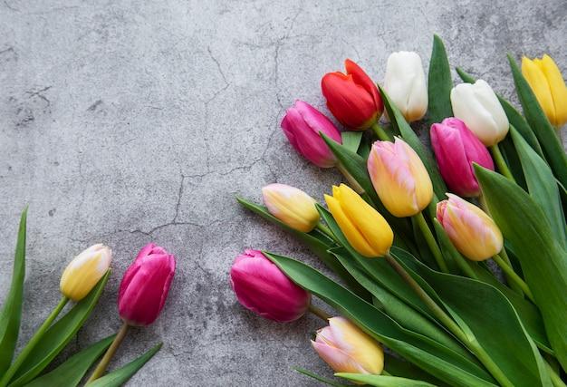 Tulipanes de primavera de colores sobre un fondo de hormigón