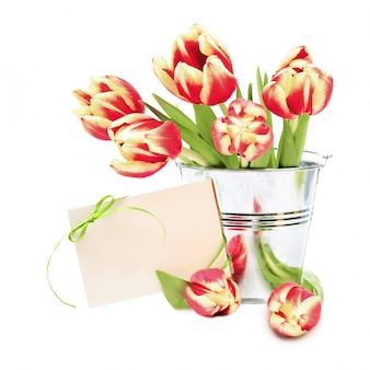 Tulipanes de rayas rojas y tarjeta de felicitación con