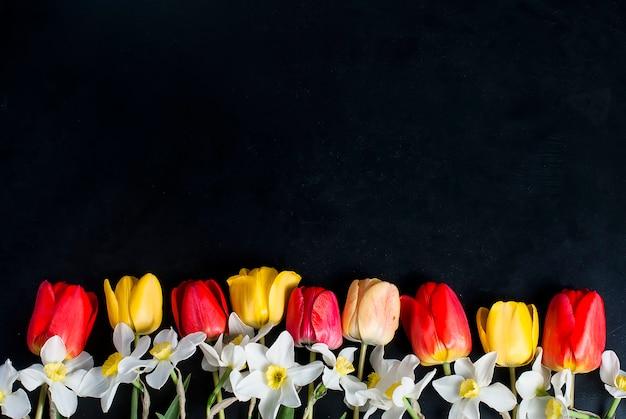 Tulipanes rojos y narcisos en fila en el negro