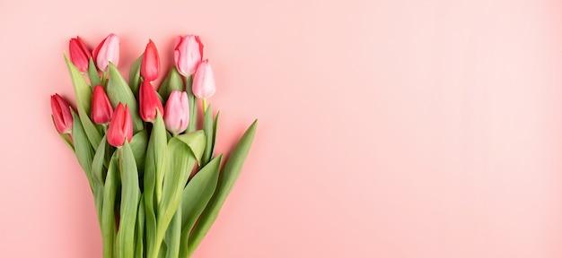 Tulipanes rojos y rosados sobre fondo rosa sólido vista superior plana laical.