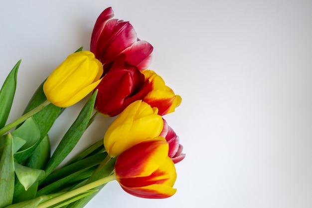 Tulipanes rosados y amarillos sobre un fondo claro.