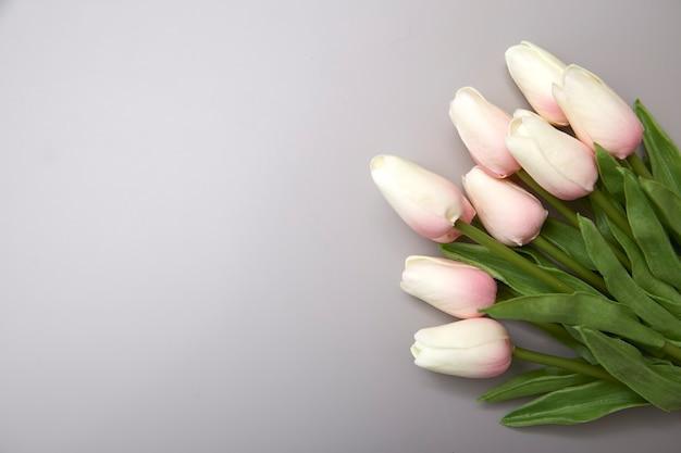 Tulipanes rosas para el día internacional de la mujer.