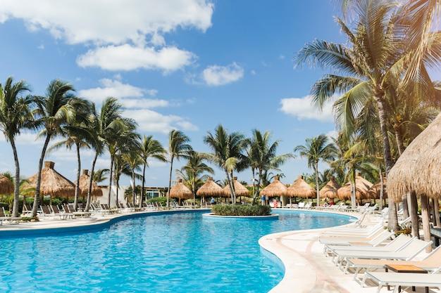 Tumbonas cerca de palmeras y piscina.