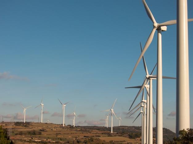 Turbinas de viento al atardecer