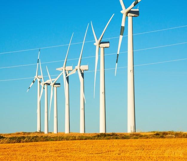 Turbinas de viento en las tierras de labrantío