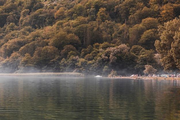 Turista al borde del idílico lago cerca del bosque verde