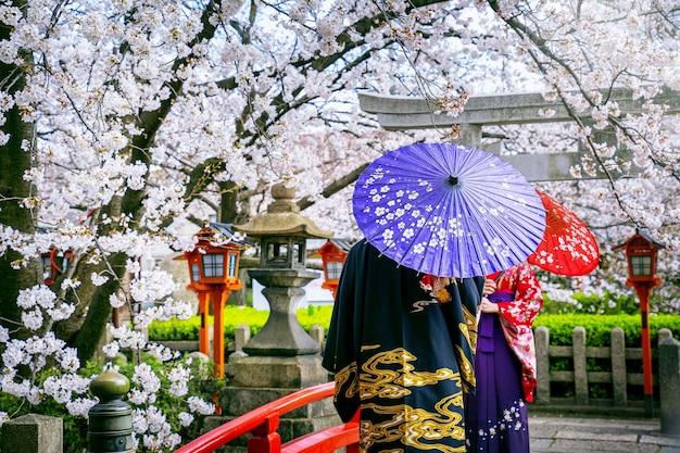 Turista vistiendo kimono tradicional japonés y flor de cerezo en primavera, templo de kyoto en japón.