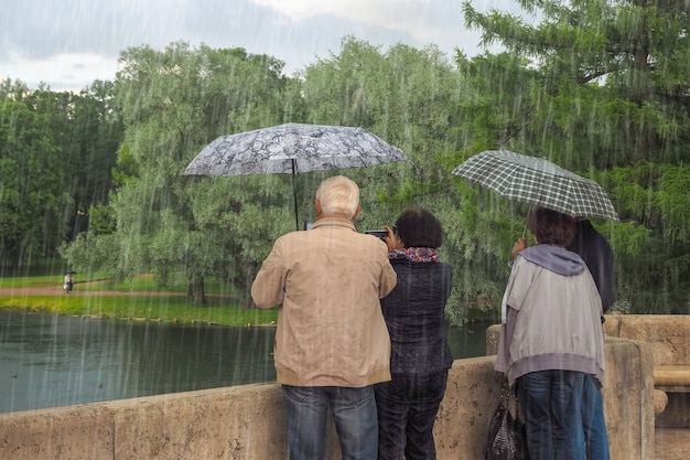 Turistas bajo la lluvia. personas con paraguas se paran y miran desde el puente.