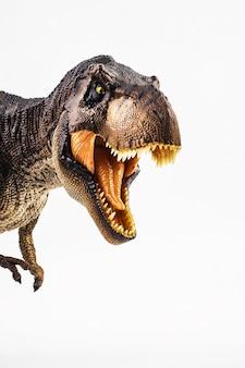 Tyrannosaurus t-rex, dinosaurio sobre fondo blanco