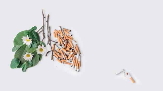 El último cigarrillo. deja de fumar tema. pulmones de una persona sana y enferma. día de no fumar copyspace