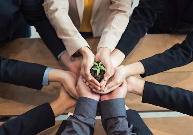 Unidad de empresarios proteger pequeños brotes con las manos