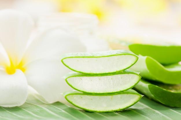 Uso de aloe vera preparado en el spa para el cuidado de la piel y cosméticos