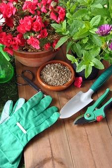 Utensilios de jardinería sobre hierba y mesa de madera con varios tipos de plantas.