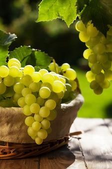 Uvas blancas en canasta en mesa de jardín