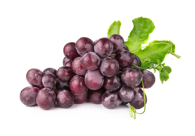 Uvas sobre un fondo blanco
