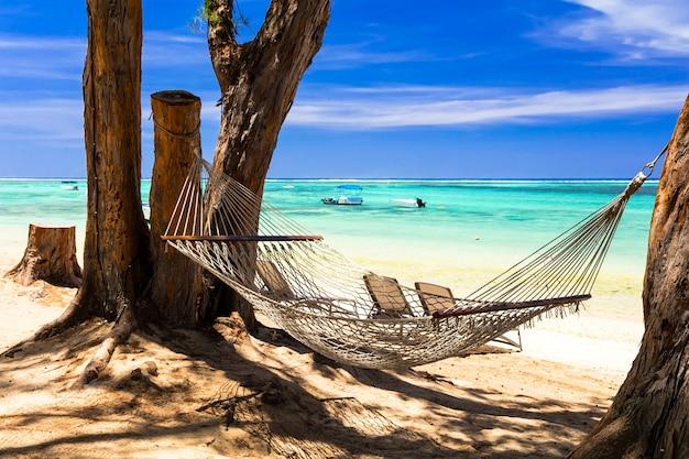 Vacaciones tropicales: relájese en una hamaca en la playa