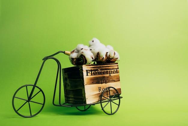 Vaina de algodón en una bicicleta antigua contra fondo verde