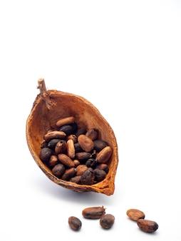 Vaina de cacao, frijoles y sobre fondo blanco