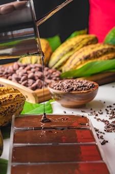 Vainas de granos de cacao, trozos de barra de chocolate, cacao en polvo