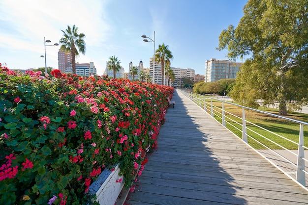 Valencia puente de las flores flores puente