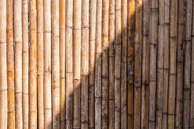 Valla de bambú
