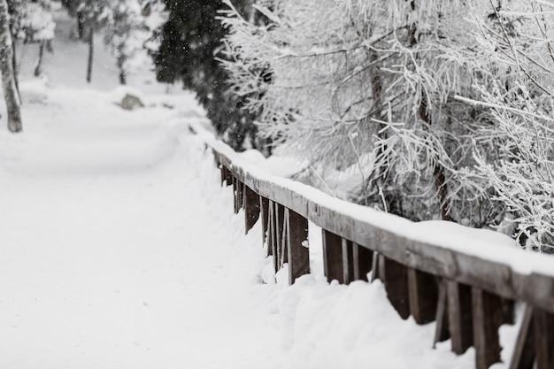 Valla de madera en el bosque nevado