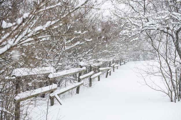 Valla de madera en la nieve en el fondo del país de invierno.