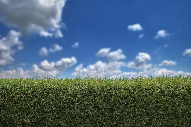 Valla verde, muro ornamental de valla con un cielo azul.