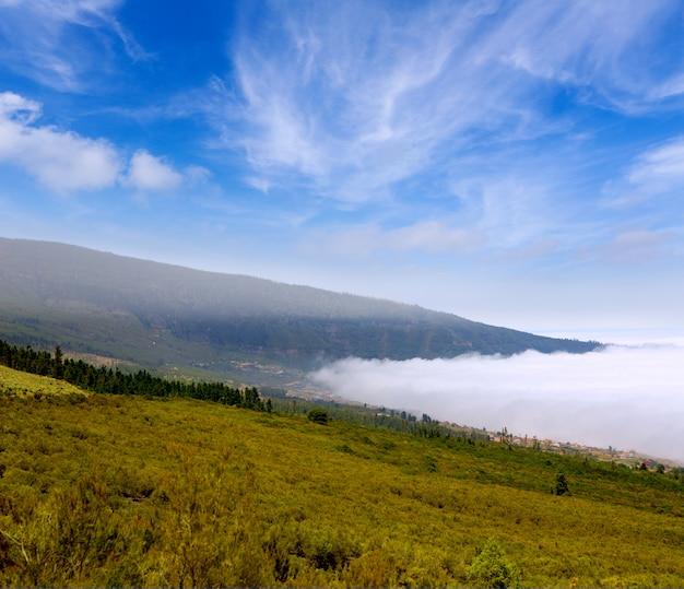 Valle de la orotava con mar de nubes en la montaña de tenerife.