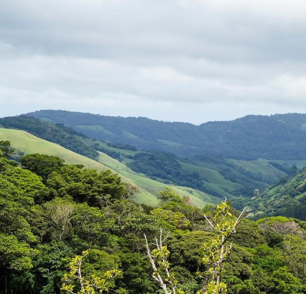 Valle pacífico natural y montaña en costa rica