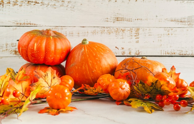 Varias calabazas entre hojas de otoño