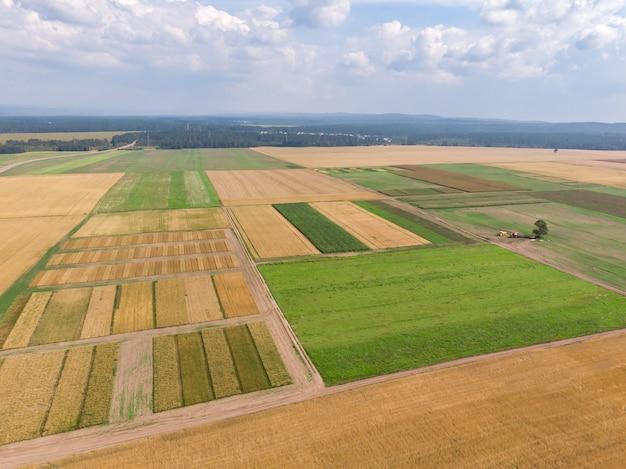 Varias secciones de campo con caminos de tierra
