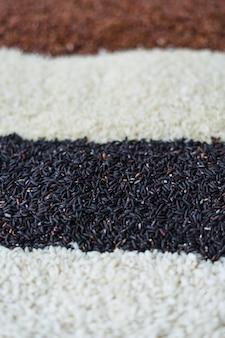 Variedad de arroz crudo fondo borroso